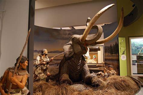 Japanese Paleolithic - Wikipedia
