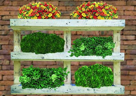 Jardín vertical con palets - 5 IDEAS | Comprar Palets Ya
