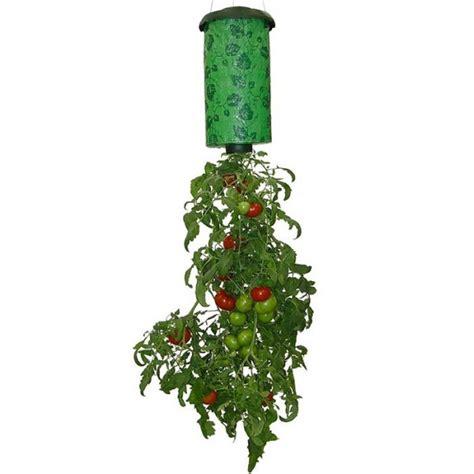 Jardinera Colgante | Tomates   e ville.com
