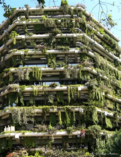 Jardines colgantes. Fotos de barcelona ciudad
