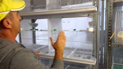 Jaula cría de canarios hecha con una estantería   YouTube