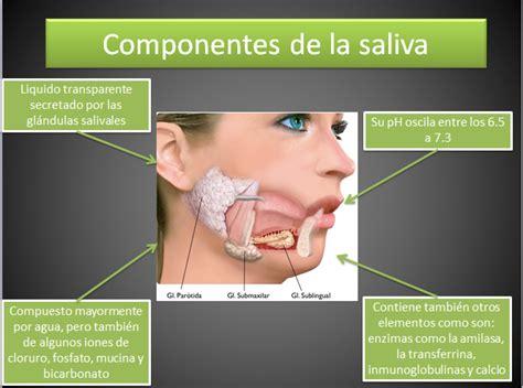 Juan Leon   Fisiologia: junio 2013