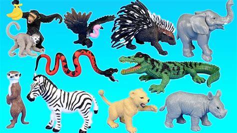 Jungle Adventure Wild Animals Playset For Kids - Animal ...