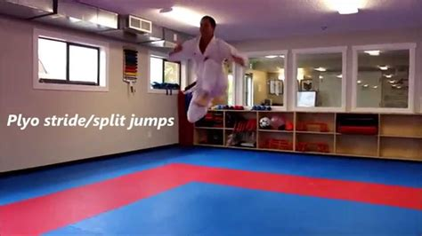 Karate Kumite Specific Speed Agility and Quickness ...
