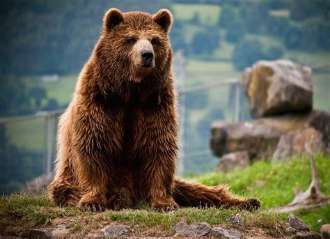 Karpin Abentura, un parque de animales diferente | PequeViajes
