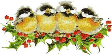 KerstPlaatjes - Vogels