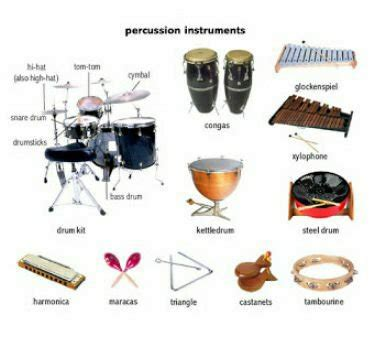 kinds of musical instrument - Percussion instrument - Wattpad