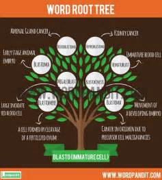 Know all about Blasto Root Word and words based on Blasto