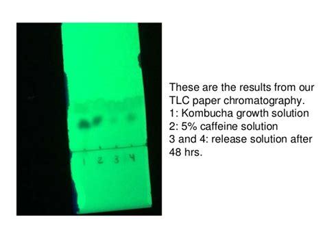Kombucha Drug Delivery   Sigma Xi