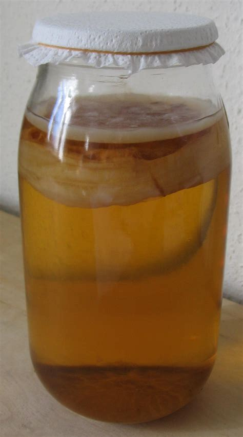 Kombucha Tea: Do the Negatives Outweigh the Positives ...