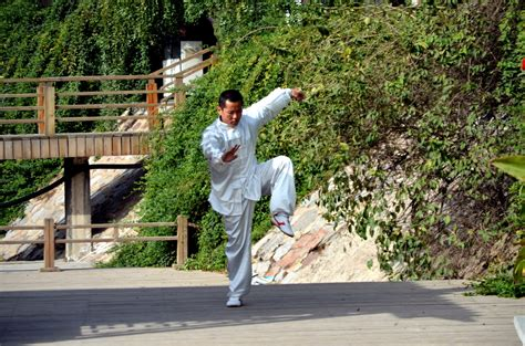Kung Fu Pose (a) Free Stock Photo - Public Domain Pictures