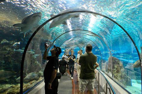 L aquarium de Barcelona, Spain.... An unforgettable ...