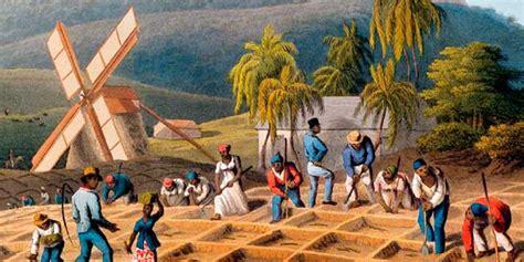 La agricultura en América Colonial | Historia Universal