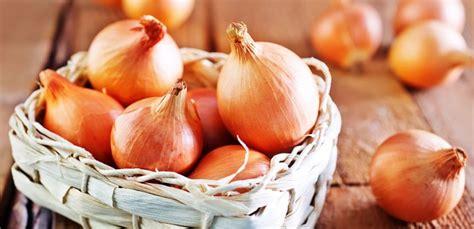 La cebolla y sus propiedades - España Fascinante