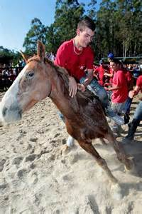 La celebración de la Rapa das Bestas en Vimianzo