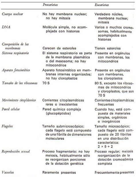 LA CÉLULA: CONCEPTO Y CARACTERÍSTICAS GENERALES. LOS VIRUS