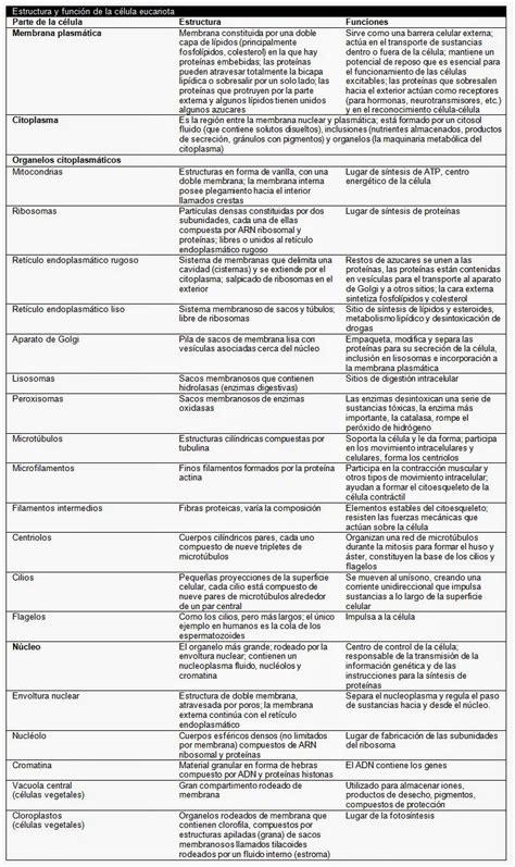 La célula. Estructura y funciones