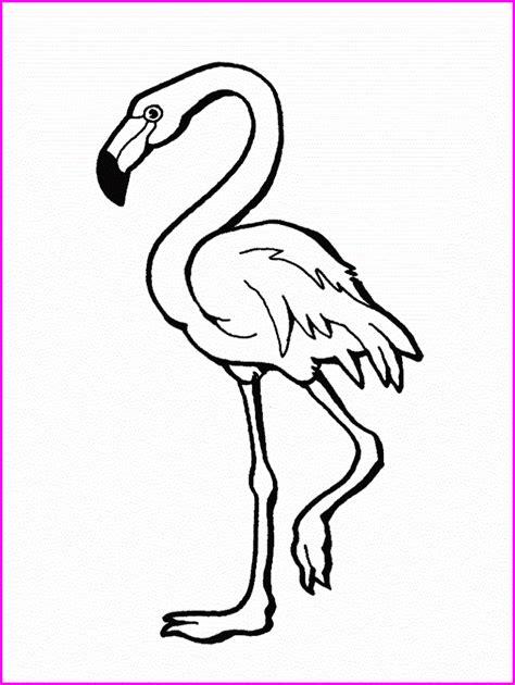 La Chachipedia: Dibujos de flamencos para colorear, para ...