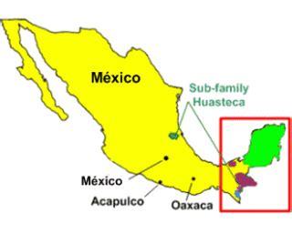 La Familia En La Cultura Maya   apexwallpapers.com