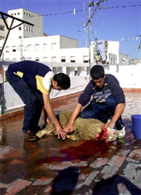 La Fiesta del Cordero, torturar por religion | Mediavida