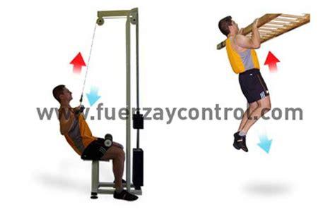 La fuerza en relación al peso corporal: Fuerza absoluta y ...