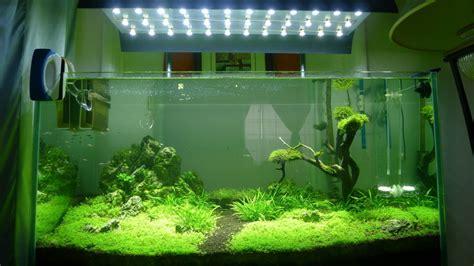 La Iluminacion del acuario plantado - Plants & Shrimps!