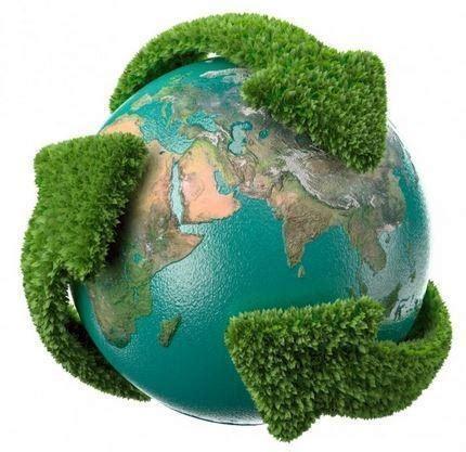 La importancia de la cultura ambiental - Tendenzias.com