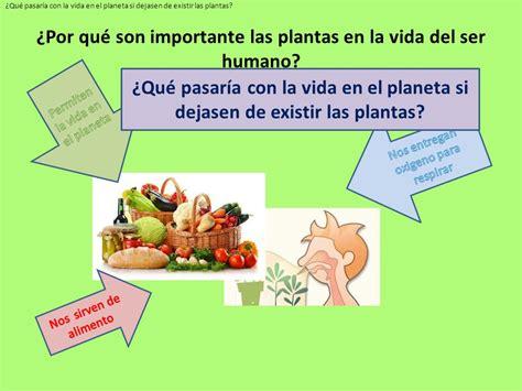 La importancia de las plantas   ppt descargar