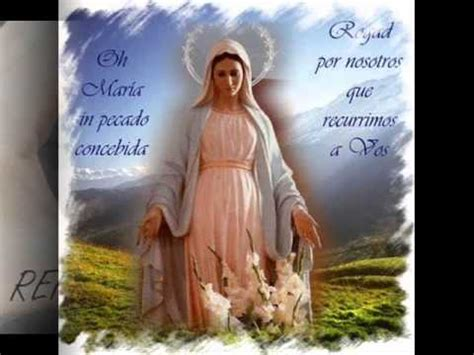 LA INMACULADA CONCEPCION DE LA VIRGEN MARIA. P. Jesus ...