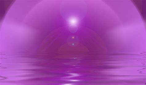 La llama violeta Archivos