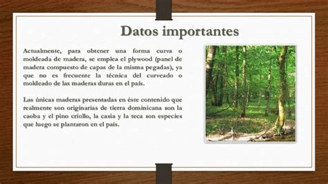 La madera. Caracteristicas y propiedades