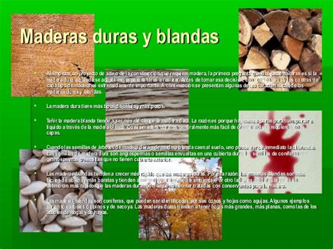 La madera