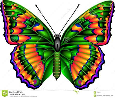 La Metamorfosis De Mariposa   newhairstylesformen2014.com