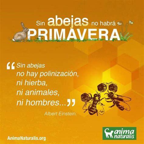 La miel de abejas y sus ¿propiedades nutricionales ...