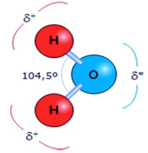 La Molécula del Agua