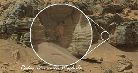 La NASA publicó la foto de un gigantesco animal en Marte ...
