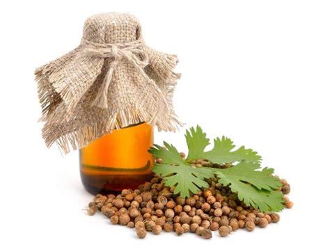 La pina es buena para combatir el acido urico  Leer más ...