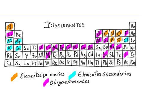 La química en...nuestro cuerpo: Bioelementos
