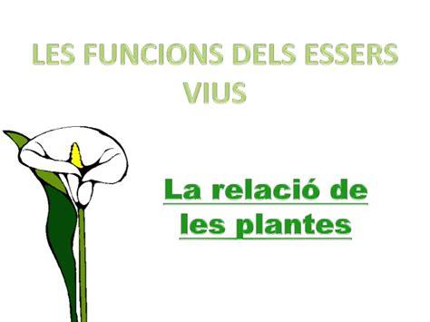 La relació de les plantes