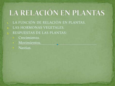 La RelacióN En Plantas