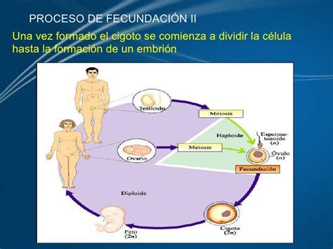 La Reproduccion Humana