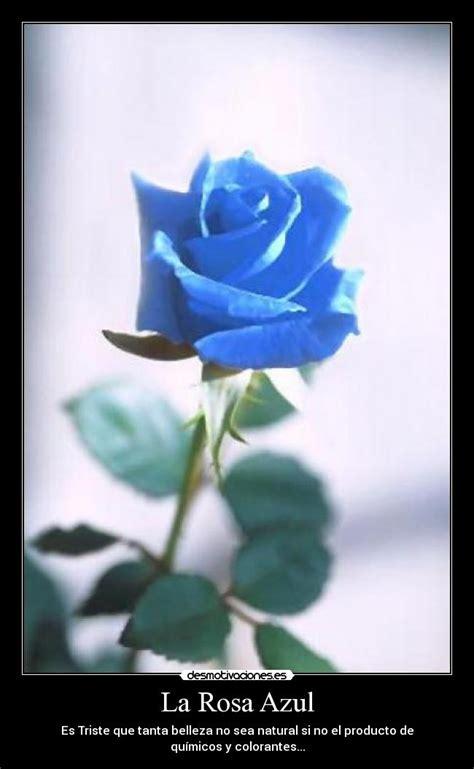 La Rosa Azul   Desmotivaciones