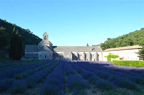 La ruta de la lavanda por la Provenza en Francia - AlmaGitane