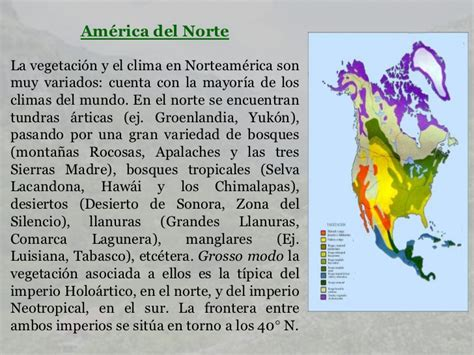 La vegetacion norte y sur