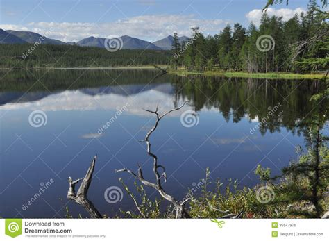 Landscape Of The Lake Sunny Day. Royalty Free Stock Image ...