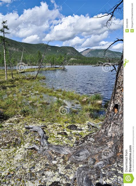 Landscape To The North Of The Lake. Royalty Free Stock ...
