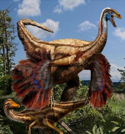 Las alas y plumas aparecieron antes de lo pensado entre ...