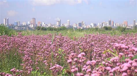 Las ciudades más importantes de Paraguay