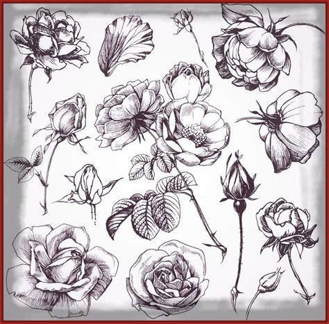 Flores Bonitas Para Dibujar Seonegativocom