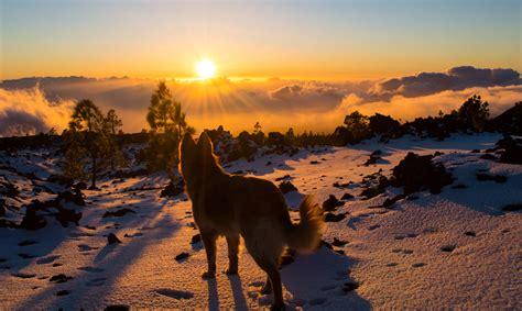 Las mejores puestas de sol del mundo  I    El Viajero Feliz
